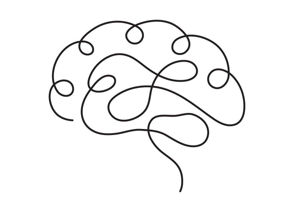 Kamelmilch als Booster fürs Gehirn